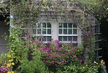 Garden / by Helen Robinson