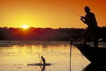 Wisconsin Fishing / by WiscTimes