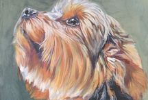 Yorkie / by Terri Campbell