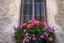 Wonderful Window Boxes / by Rhonda Stults, Realtor