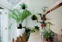 gw   green home / by grafisch werk(t)
