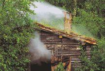 My Big Bear Tree House! / by Carolita Gonzalez