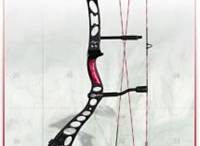 Archery / by Amanda Hoffman