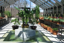 Greenhouses by Solar Innovations, Inc. / These are examples of aluminum and glass greenhouses produced in the USA.  All custom made to fit your project.  / by Solar Innovations, Inc.