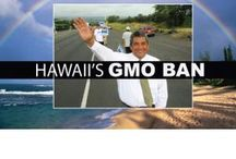 BAN GMOs / by Kerry