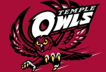 Teams & Mascots with Owls / by Linda King