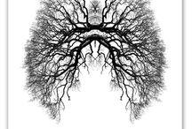 Pulmonary Embolism / by Desiree Lambert