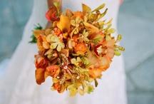 Wedding / by Katie Asproth