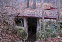 Root Cellar, Food Storage, & Canning / by Katherine Eggen
