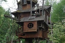 Treehouse / by Jillian Moroney