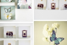 Framing Photos / by Susie Roberts