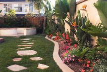 lawn & garden. / by Meg Bateman