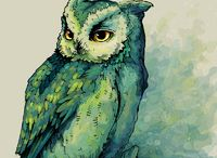 owl / by Mike Newson