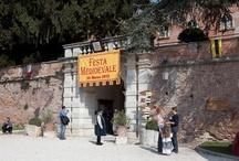 Grande Festa Medievale 2012 / di Castello Bevilacqua