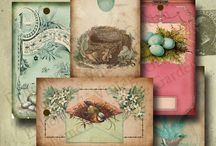Spring Printables / by Debbie-Anne Parent