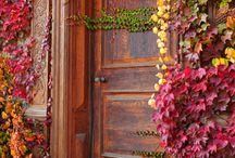 Front doors / by Carmenza Trujillo