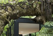 Tree House / by Chris Charlton