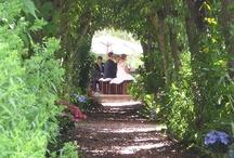 Alice in Wonderland wedding  / by Bella Bee Weddings