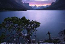 My Montana / by Lisa Sheehan
