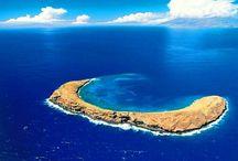 My Hawaii / by Jason Marchand