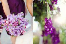 Wedding: Color Schemes & Themes / by Jessica Delrosario