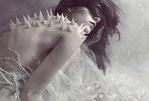 dreams / by elias terrazas