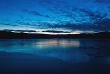 Newfoundland  / by carol mallam