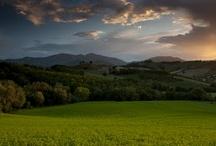 Sunsets / by Giulia da Urbino