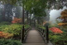 Garden Bridges✶ / by Chuck Sears
