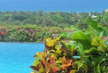 Montego Bay / by Paradise Palms Jamaica