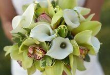 Wedding Ideas / by Angelica Huffman