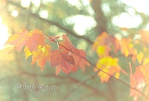 Enjoying Natures Finest / by Kirstie Roberts Photography