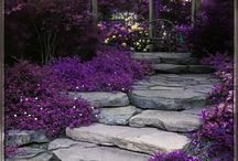Landscaping / by Laurie Powell Hartsfield