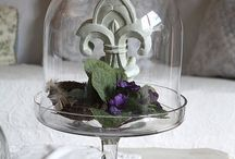 ~ Treasures under Glass ~ / by Elaine Prater