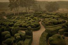 Gardens / by Little Goodall