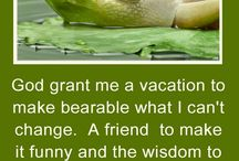 Wisdom, Quotes, Funnies etc... / by Ginny Wall