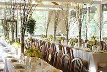 Fabulous Centerpieces & Place Settings / by Alanna Andes