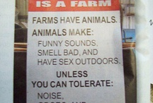 For the Farm / So much to be done around here before the sun sets! / by Tara Tarbet