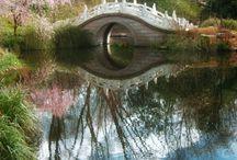 Secret Gardens / by Lisa Hewitt