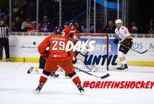 2014-2015 Season / Grand Rapids Griffins 2014-2015 Season / by Grand Rapids Griffins