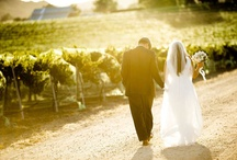 Vineyard weddings  / by Stephanie Dowdy