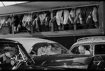 Fellini / by Elizabeth Curran CDT, RDT