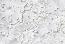 Papercraft / by Megan Hoberman