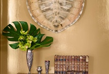 redecorating / by Susan Deese