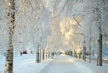 Winter / by Eloise Fox