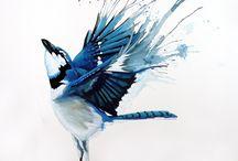 Birdies / by Laurie Sawatzke