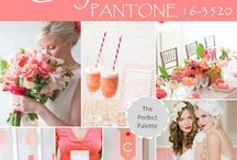 Wedding Palettes  / by PANTONE COLOR