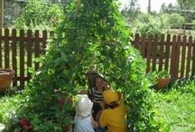 gardening go to / by Teresa Dunwell