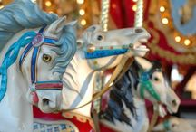 CAROUSELS / Fun for the old & young. / by Diana Carson