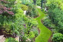 Landscaping & Gardening Ideas / by Tina Price